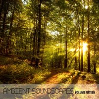 Ambient SoundScapes, Vol. 15 — Terry Oldfield