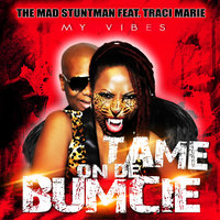 My Vibes (Tame on de Bumcie) — The Mad Stuntman, The Mad Stuntman feat. Traci Marie