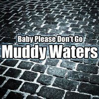 Baby Please Don't Go — Muddy Waters