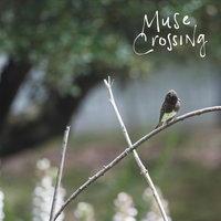 Crossed Lines — Muse Crossing