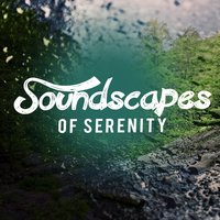 Soundscapes of Serenity — Sounds Of Nature Relaxation, Sleep Music with Nature Sounds Relaxation, Soundscapes!, Soundscapes!|Sleep Music with Nature Sounds Relaxation|Sounds of Nature Relaxation