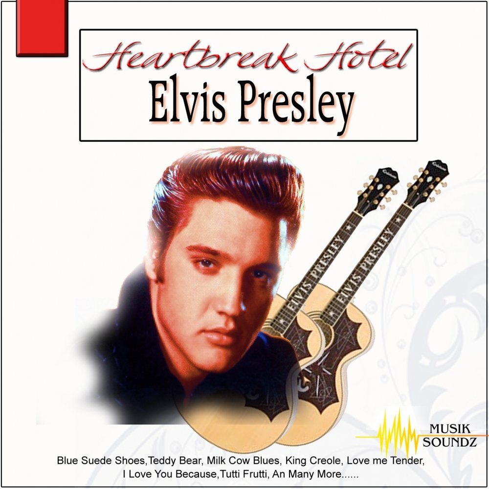 a biography and life work of elvis presley an american musician I've never written a song in my life it's all a big hoax - elvis presley quotes from brainyquotecom.