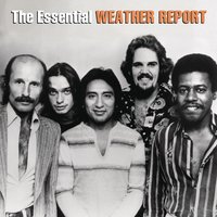 The Essential Weather Report — Weather Report