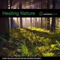 Healing Forest (Sleep and Relaxation Nature Sounds, Vol. 3) — Insomnia Nights