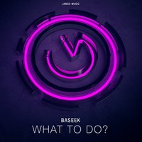 What to Do? — Baseek