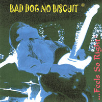 ...Feels So Right — Bad Dog No Biscuit