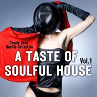 A Taste of Soulful House, Vol. 1 — сборник