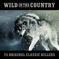 Wild in the Country - 75 Original Classic Killers — сборник