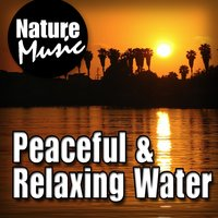 Peaceful and Relaxing Water (Nature Sound with Music) — Nature Music