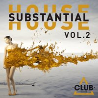 Substantial House, Vol. 2 — сборник