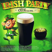 Irish Party Album — Barnbrack, Dan O'Neill Band, Micky Modelle
