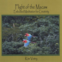 Flight of the Macaw: Embodied Meditation for Creativity — Kim Votry