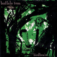 Birdbrain — Buffalo Tom