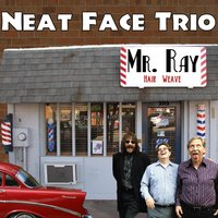 Mr. Ray - Single — Neat Face Trio