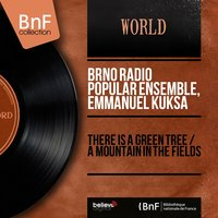 There Is a Green Tree / A Mountain in the Fields — Emmanuel Kuksa, Brno Radio Popular Ensemble, Brno Radio Popular Ensemble, Emmanuel Kuksa