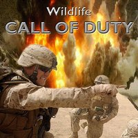 Call of Duty — Wildlife