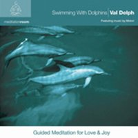 Swimming with Dolphins - Meditation Room — Val Delph