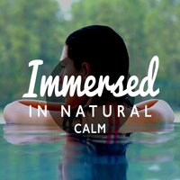 Immersed in Natural Calm — Sounds of Nature Relaxation