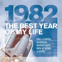 The Best Year Of My Life: 1982 — сборник