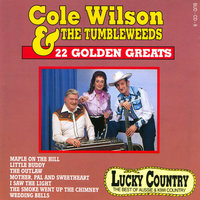 Cole Wilson & The Tumbleweeds - 22 Golden Greats — Cole Wilson & The Tumbleweeds