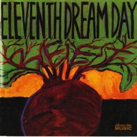 Beet — Eleventh Dream Day