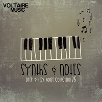 Synths and Notes 25 — сборник
