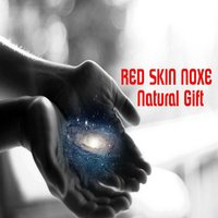 Natural Gift — Винченцо Беллини, Red Skin Noxe