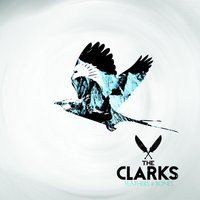 Feathers & Bones — The Clarks