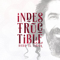 Indestructible: Track by Track — Diego El Cigala