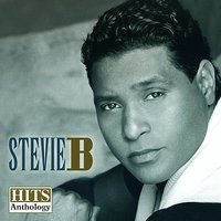 Hits Anthology — Stevie B
