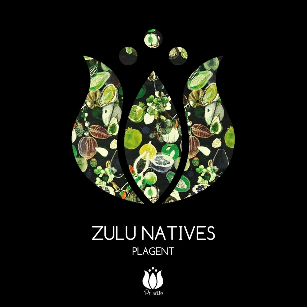 zulu nation November is officially hip-hop history month it's also the 40th anniversary of the universal zulu nation, and the 39th anniversary of hip hop.