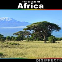 The Sounds of Africa — Digiffects Sound Effects Library