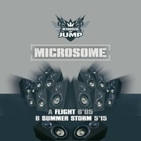 Flight — Microsome