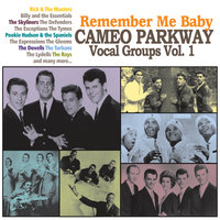 Remember Me Baby: Cameo Parkway Vocal Groups Vol. 1 — сборник
