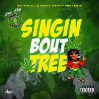 Singin' 'Bout Tree — Box Boy Mike Spitz