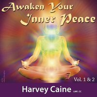 Awaken Your Inner Peace, Vol. 1 & 2 (Eleven Chakra Healing System) — Harvey Caine