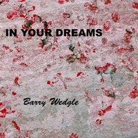 In Your Dreams — Barry Wedgle