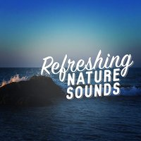 Refreshing Nature Sounds — Nature Sounds Sleep