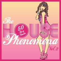 The HOUSE Phenomena - 50 Sexy Tracks, Vol. 2 — сборник