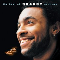 Mr Lover Lover - The Best Of Shaggy... (Part 1) — Shaggy