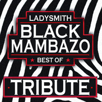 Zoo Loo Tribute to Ladysmith Black Mambazo - Best of — Zoo Loo