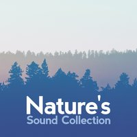 Nature's Sound Collection — Nature Sound Collection