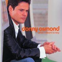 What I Meant To Say — Donny Osmond