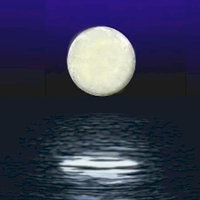 Moon in the Water — Acapala