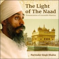 The Light Of The Naad — Parvinder Singh Khalsa