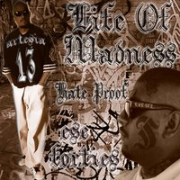 Life of Madness — Ese 40'z
