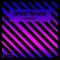Propose — Dried Flower