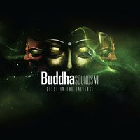 Buddha Sounds Vol. 6: Guest in the Universe — Buddha Sounds