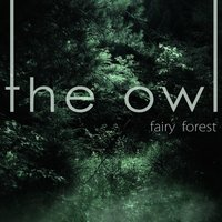 Fairy Forest — The Owl