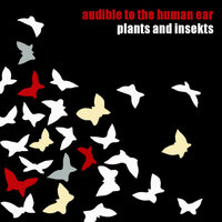 Audible To the Human Ear — Plants and Insekts